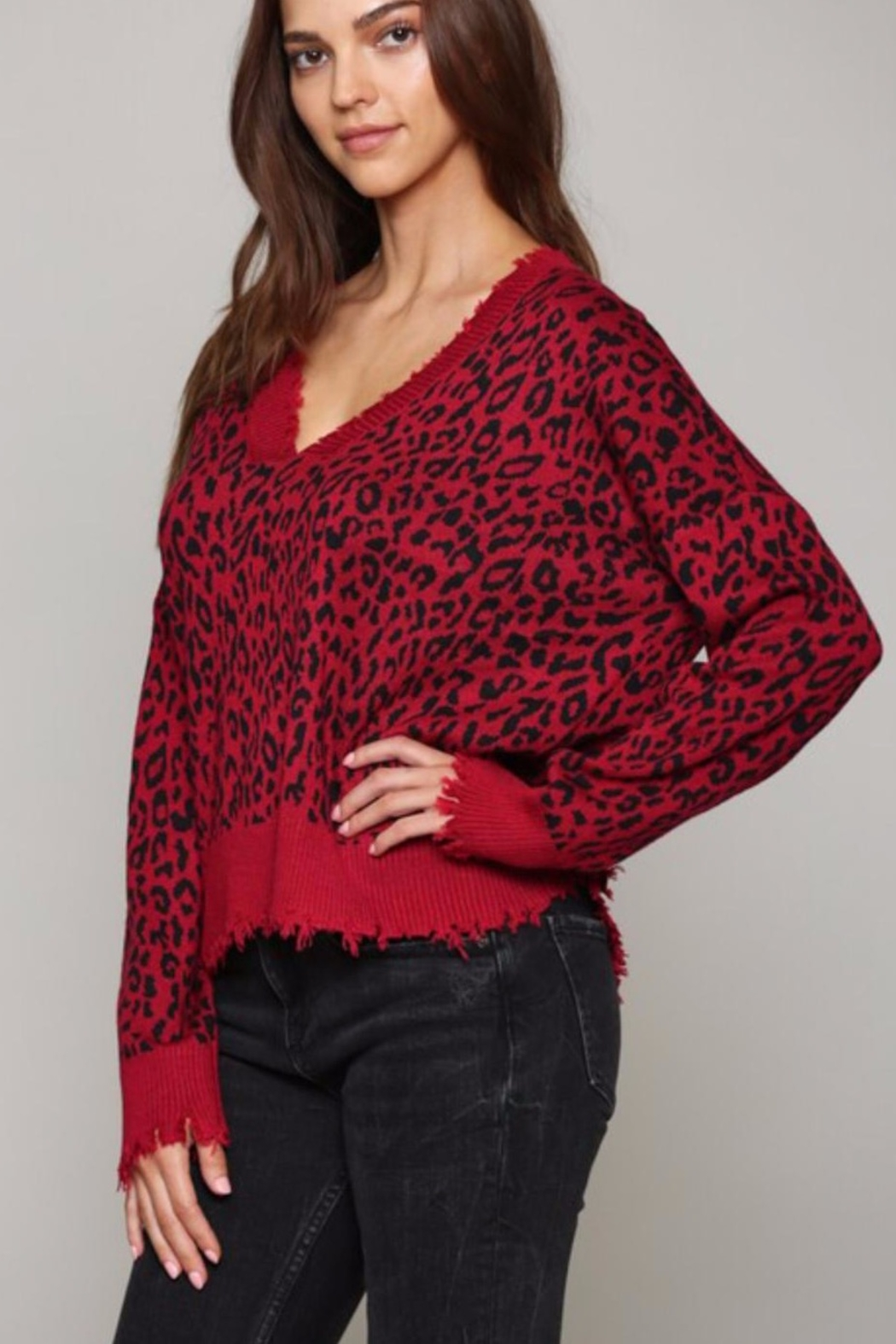 Fate Leopard Print V Neck Distressed Sweater - Front Full Image