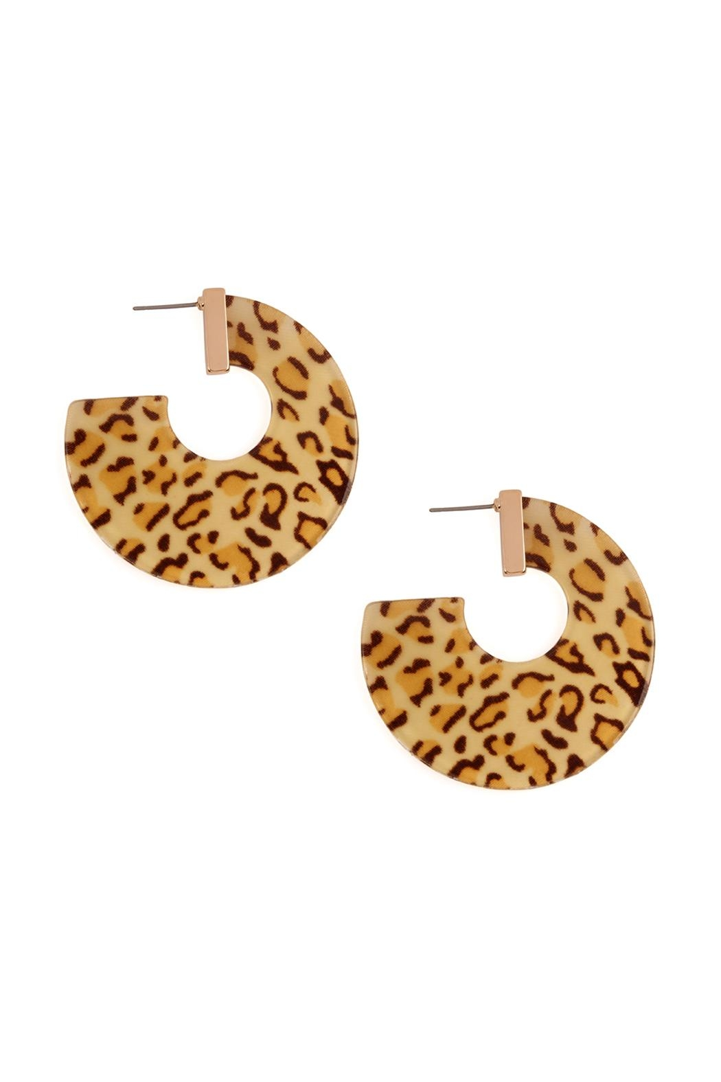 Riah Fashion Leopard-Resin-Print Post Earrings - Front Cropped Image