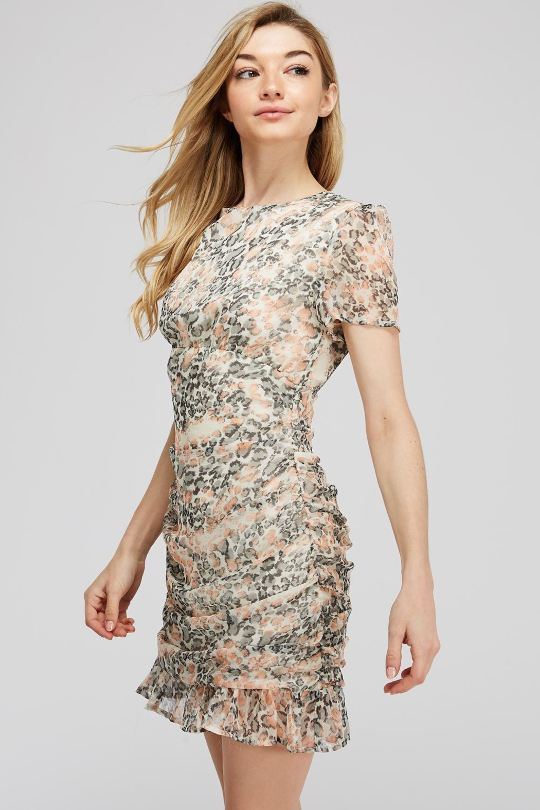 storia Leopard Ruched Dress - Front Full Image