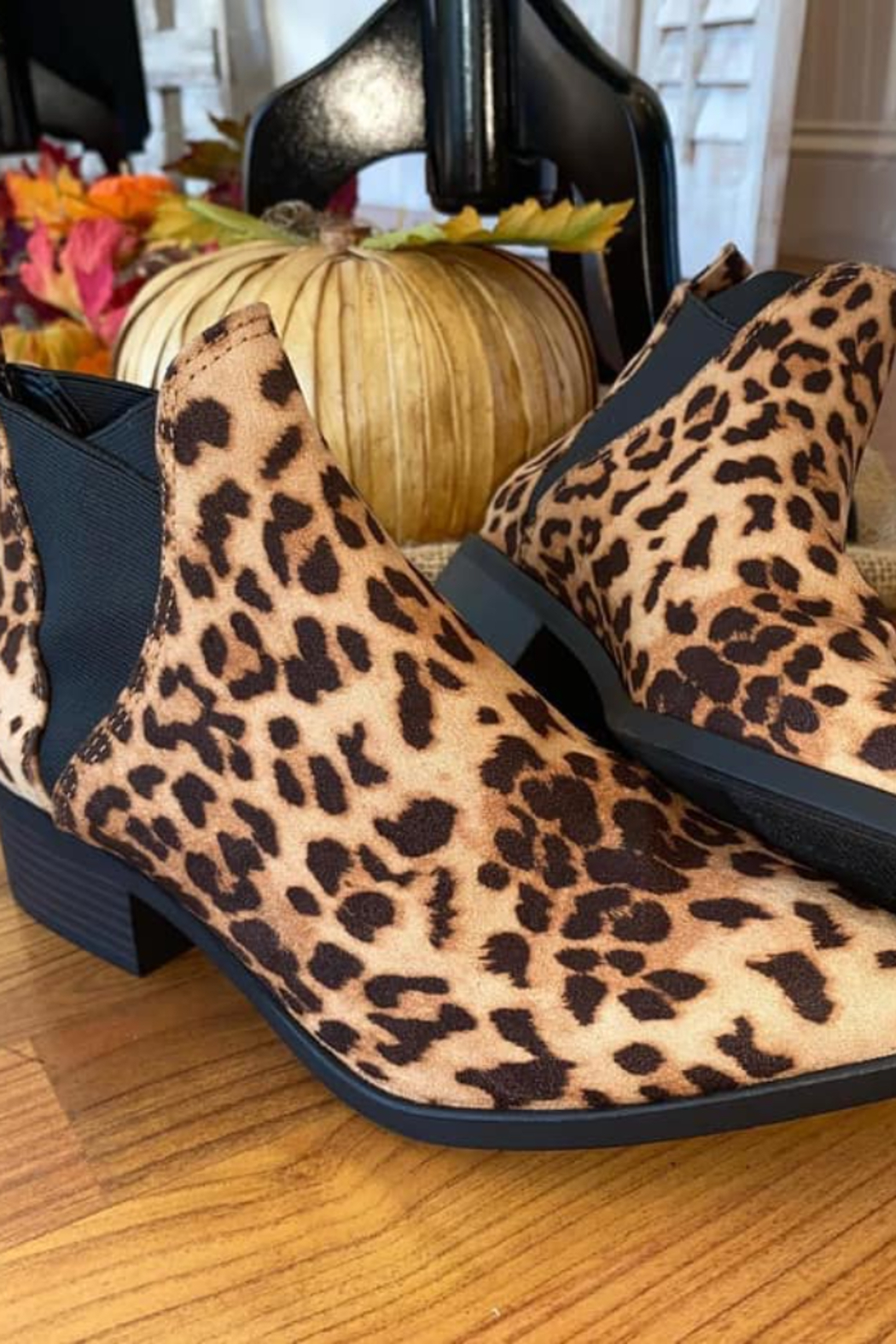 Mylu Leopard Slip on Ankle Boot - Main Image
