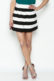 Leshop Samantha Party Skirt - Front cropped