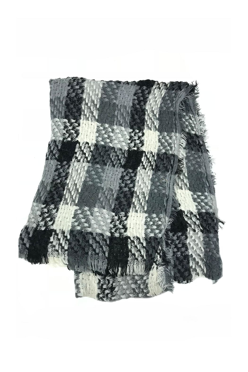 Lets Accessorize Plaid Fringe Scarf - Front Cropped Image