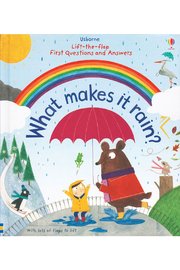 Usborne Lift-the-Flap First Questions And Answers: What Makes it Rain? - Product Mini Image