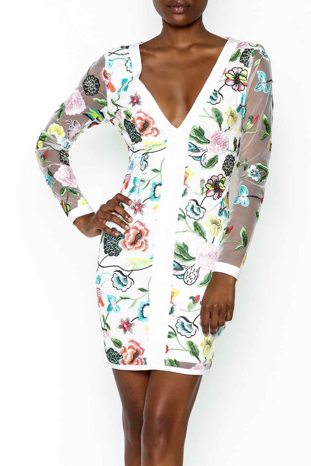 LIFTED Boutique Floral Embroidered Dress - Main Image