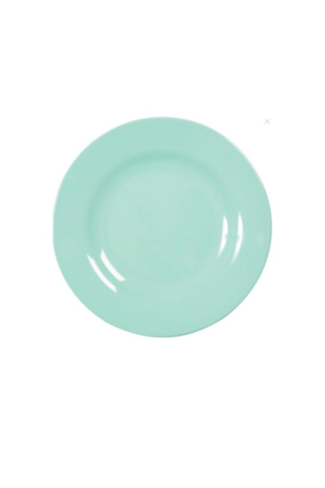 RICE Light Blue Plate - Main Image