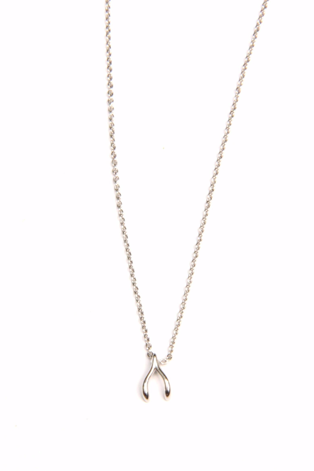 Light Years Collection Dainty Wishbone Necklace - Main Image