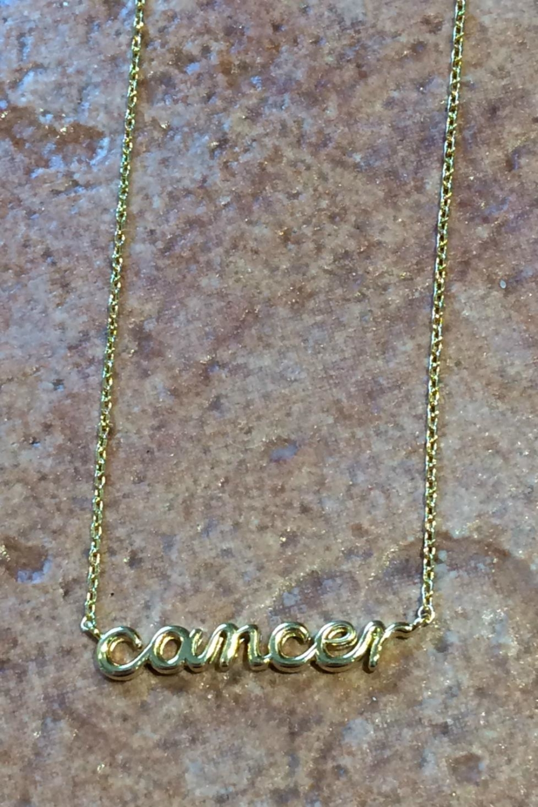Light Years Collection Zodiac Script Necklaces - Front Cropped Image