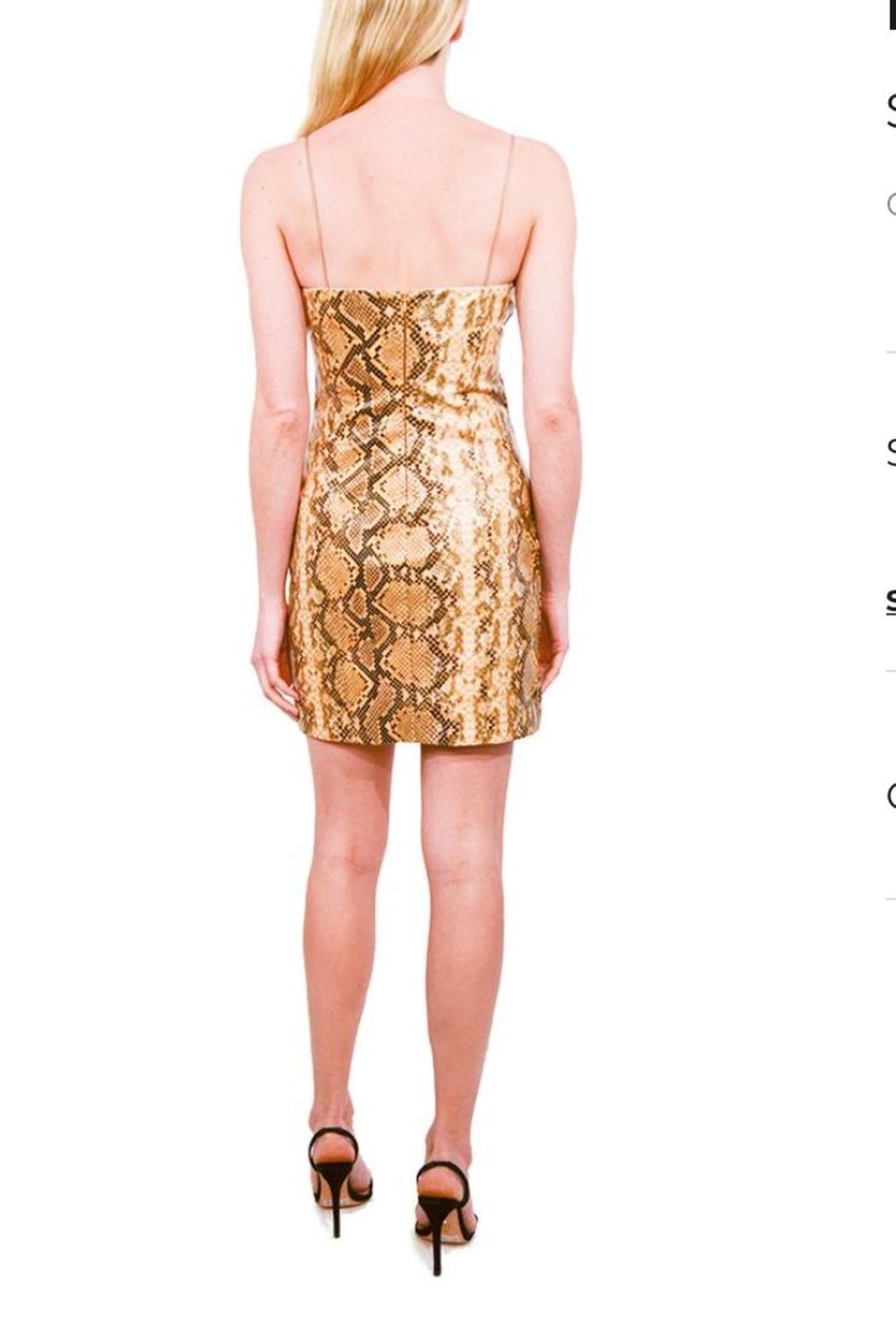 LIKELY Python Hayley Dress - Front Full Image