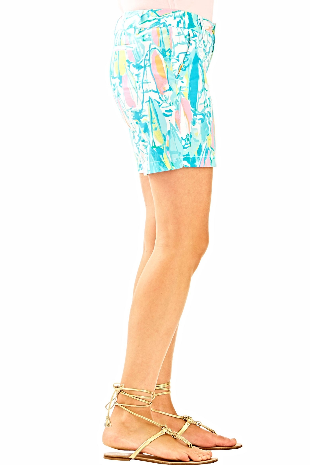 Lilly Pulitzer Jayne Shorts - Back Cropped Image