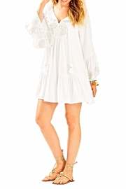 Lilly Pulitzer Amisa Tunic Dress - Back cropped