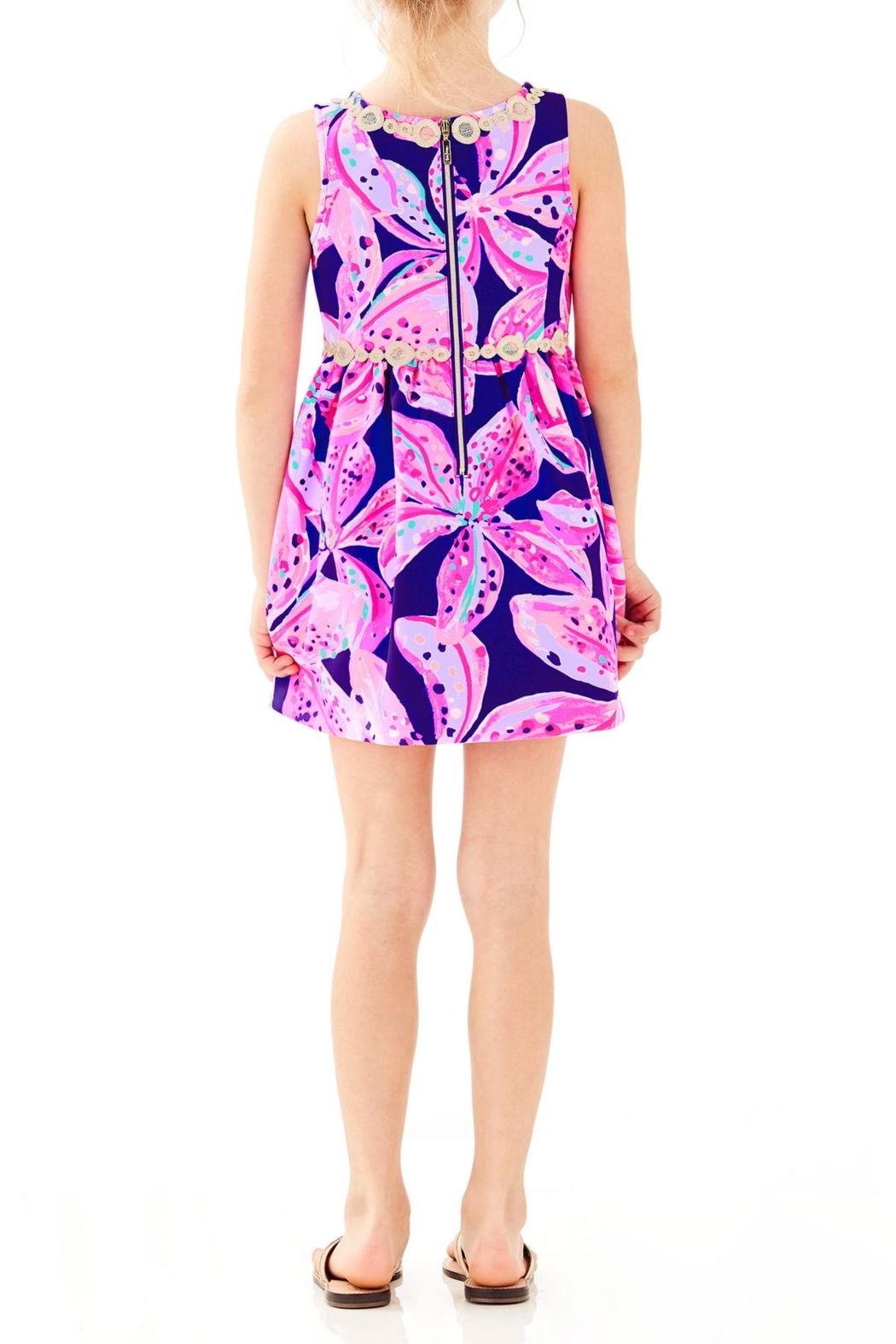 Lilly Pulitzer Baylee Dress - Front Full Image