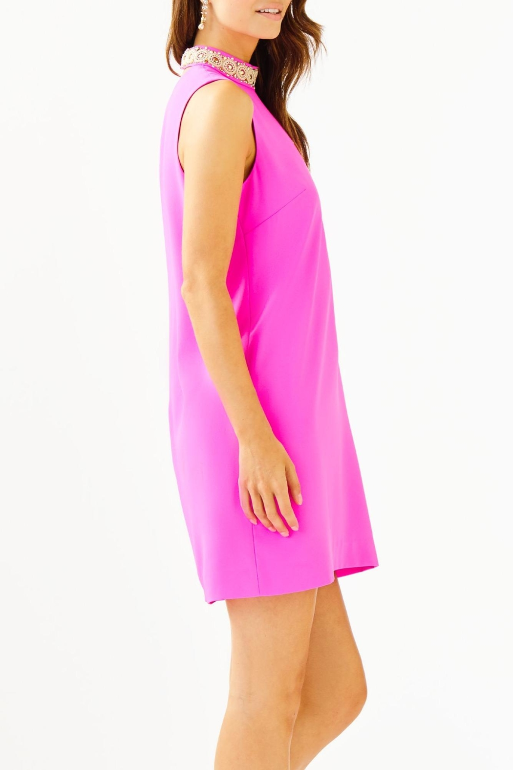 Lilly Pulitzer Brandi Beaded Dress - Side Cropped Image