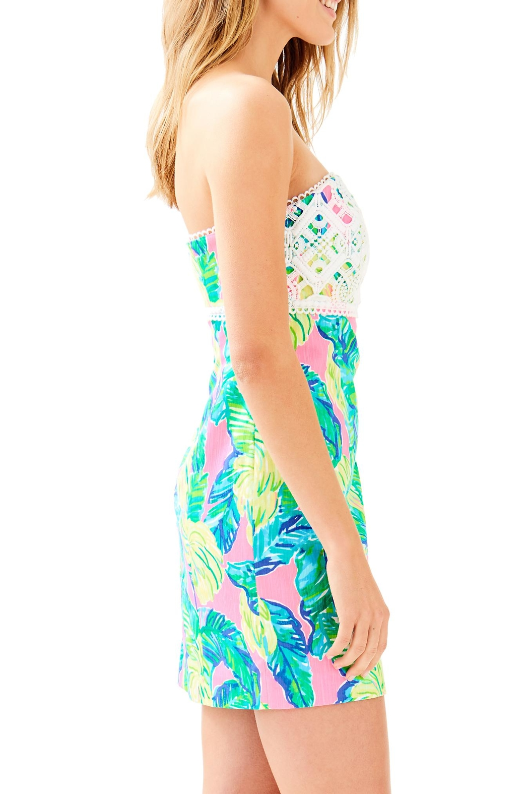 Lilly Pulitzer Brynn Dress - Side Cropped Image