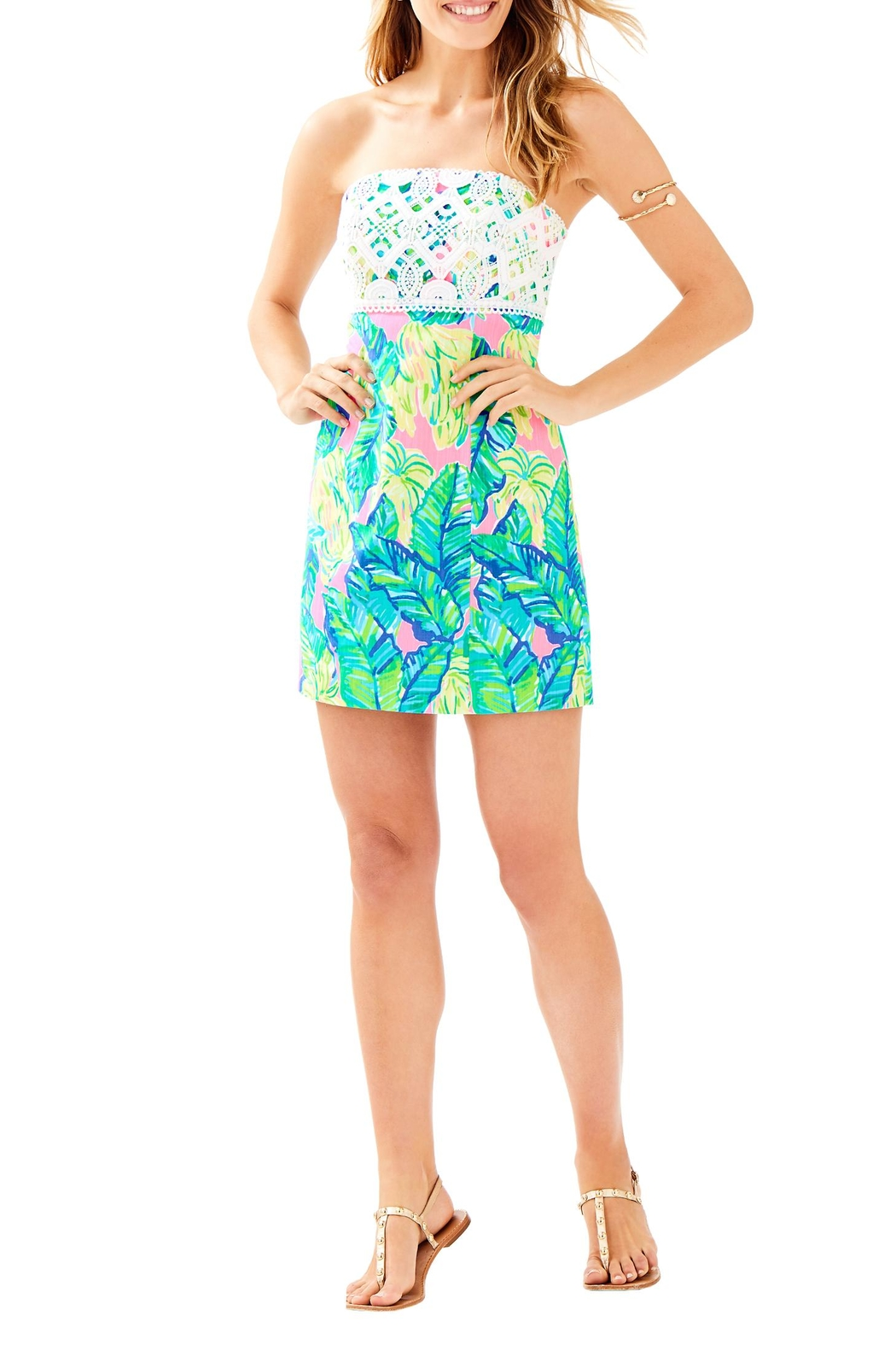 Lilly Pulitzer Brynn Dress - Back Cropped Image