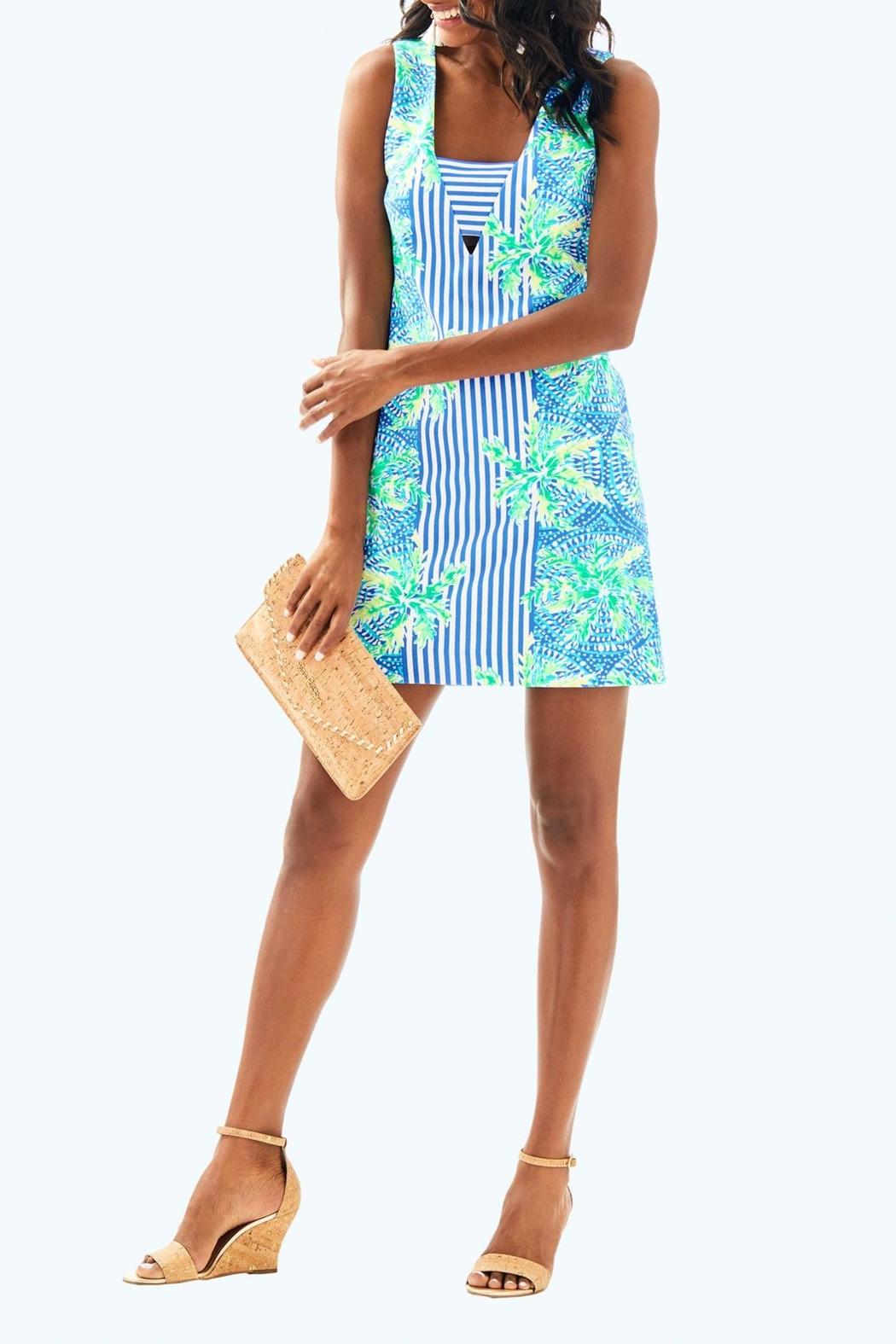 Lilly Pulitzer Chiara Shift Dress - Back Cropped Image