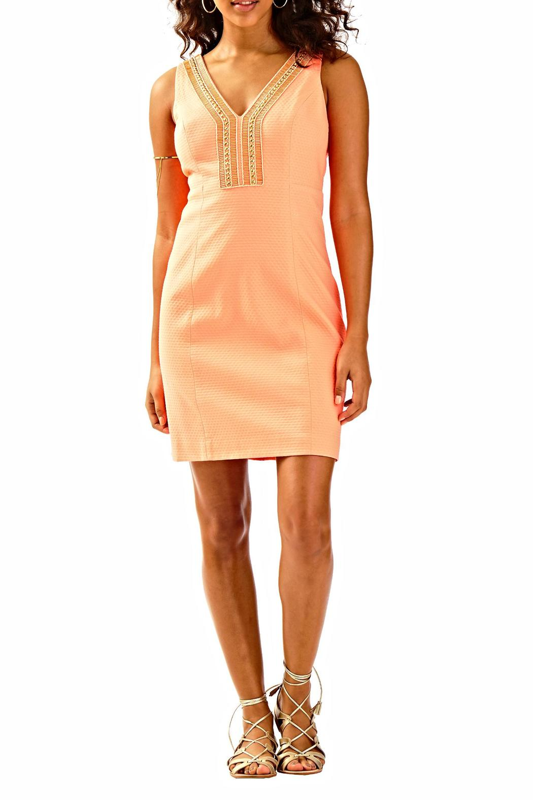 Lilly Pulitzer Eliot Shift Dress - Back Cropped Image