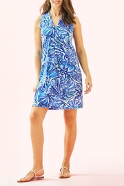Lilly Pulitzer Emile Dress - Back cropped
