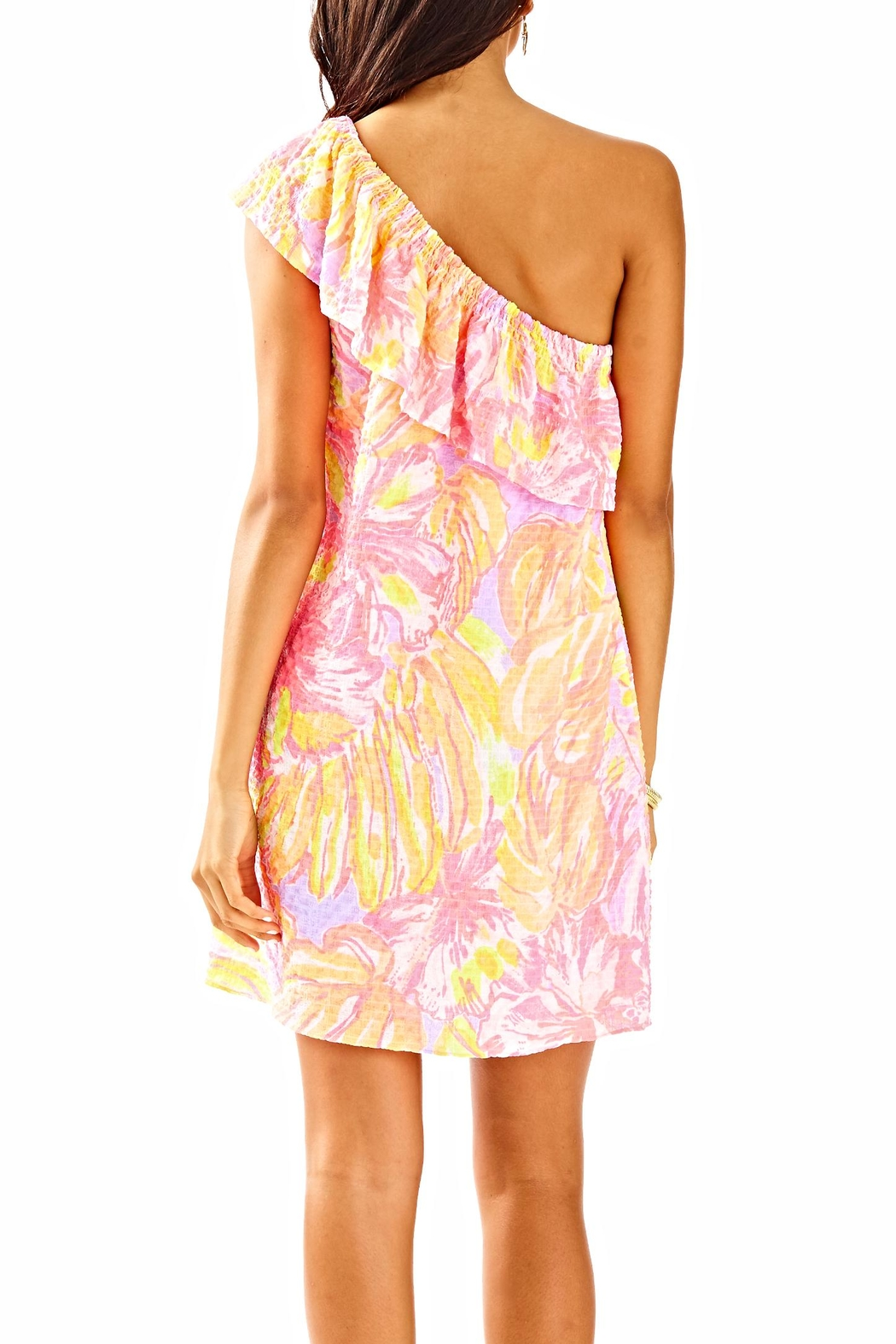 Lilly Pulitzer Emmeline Dress - Front Full Image