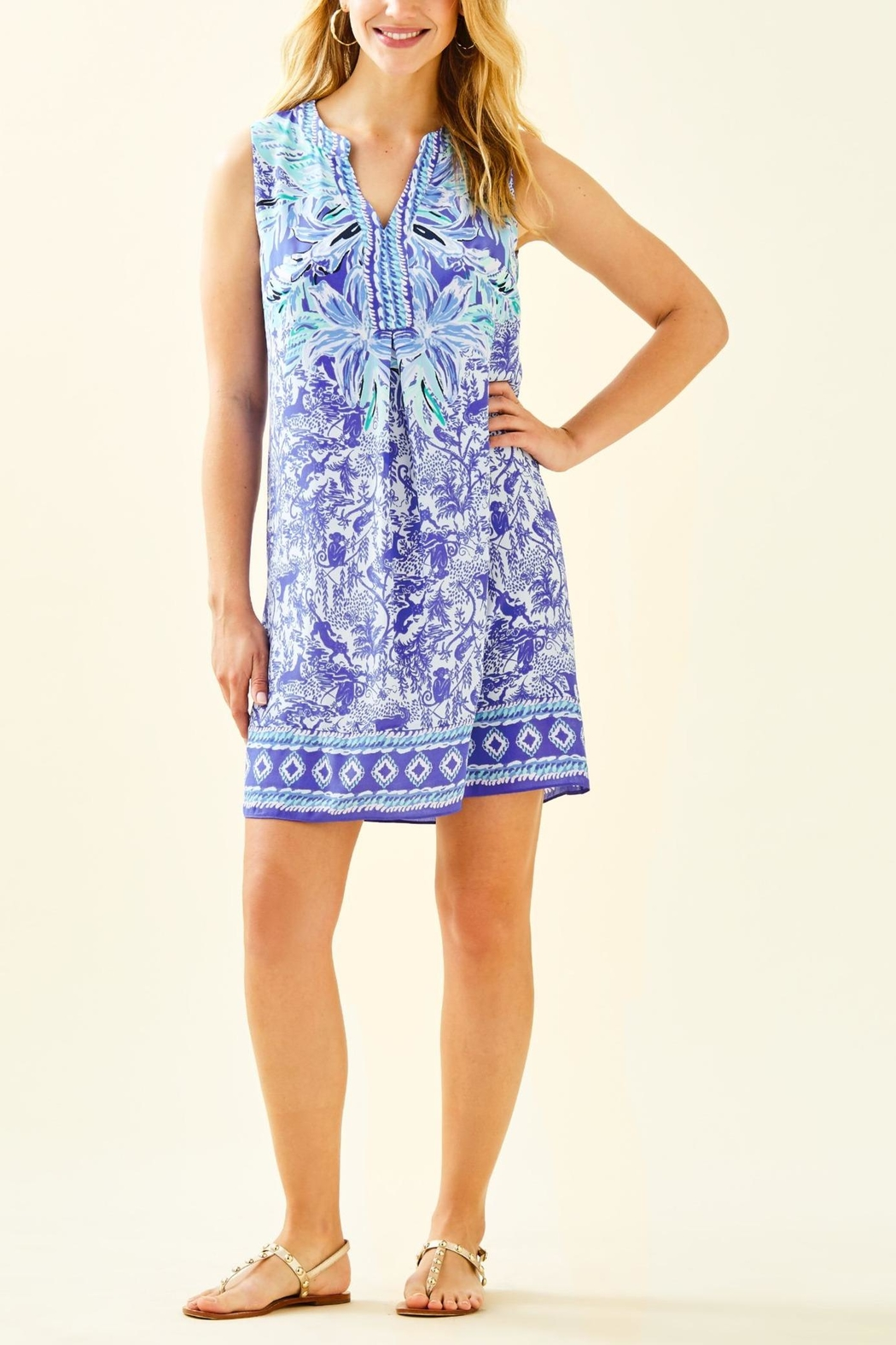 Lilly Pulitzer Evah Shift Dress - Back Cropped Image