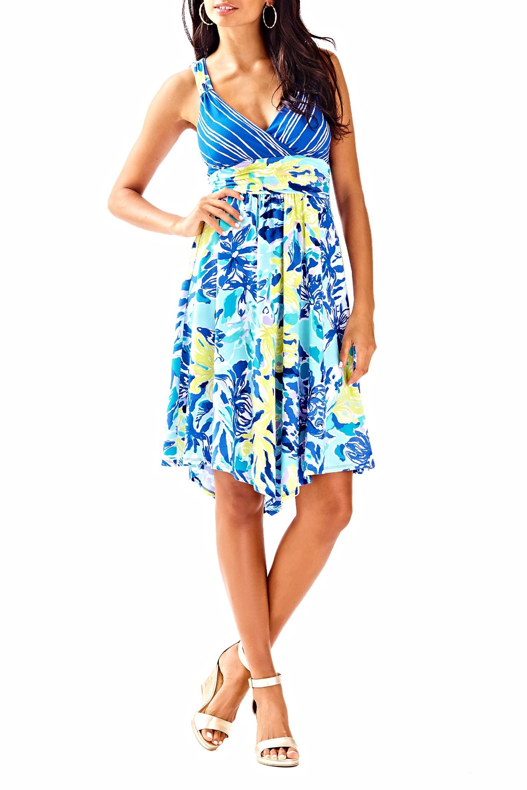 Lilly Pulitzer Hadley Dress - Back Cropped Image