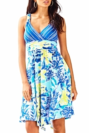 Lilly Pulitzer Hadley Dress - Front cropped