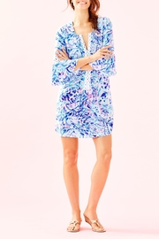 Lilly Pulitzer Hollie Tunic Dress - Back cropped