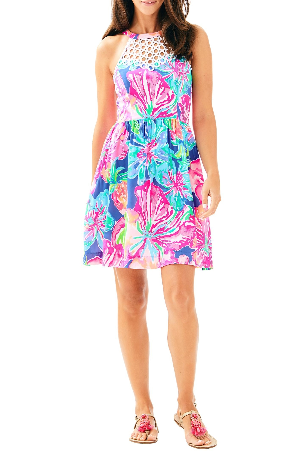 Lilly Pulitzer Kinley Dress - Back Cropped Image