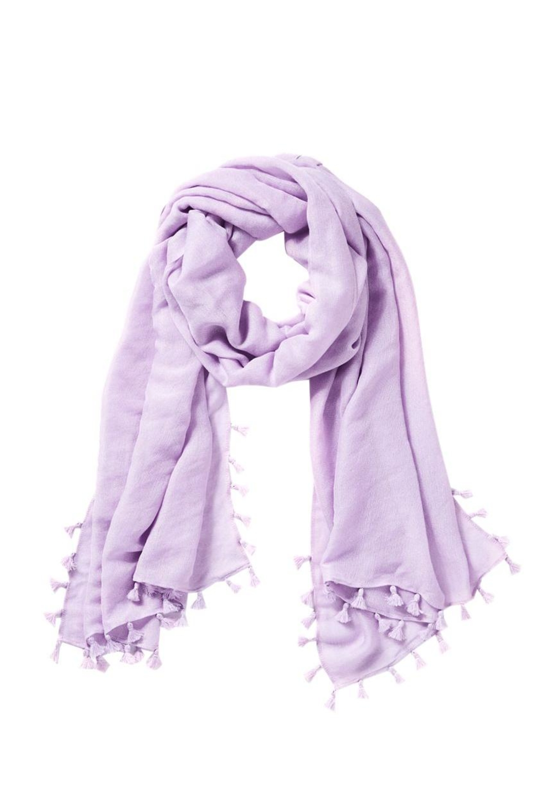 Lilly Pulitzer Lana Scarf - Front Cropped Image