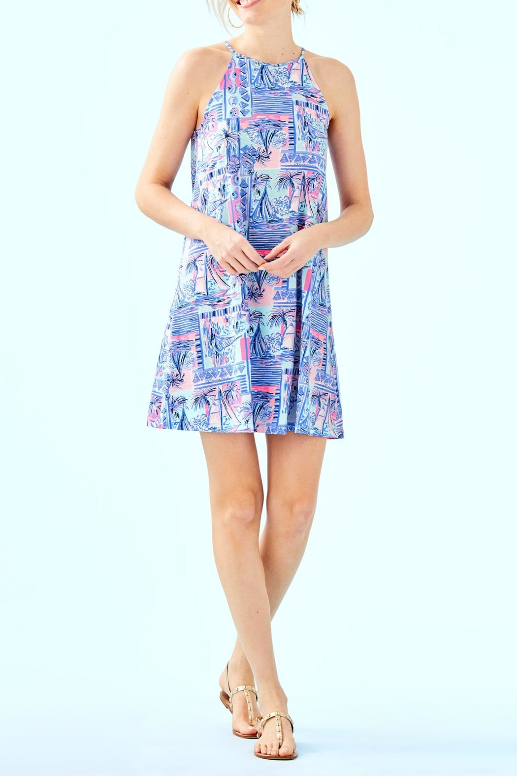 Lilly Pulitzer Margot Swing Dress - Back Cropped Image