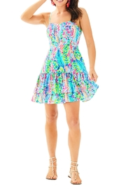 Lilly Pulitzer Morgana Dress - Back cropped