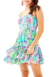 Lilly Pulitzer Morgana Dress - Front cropped