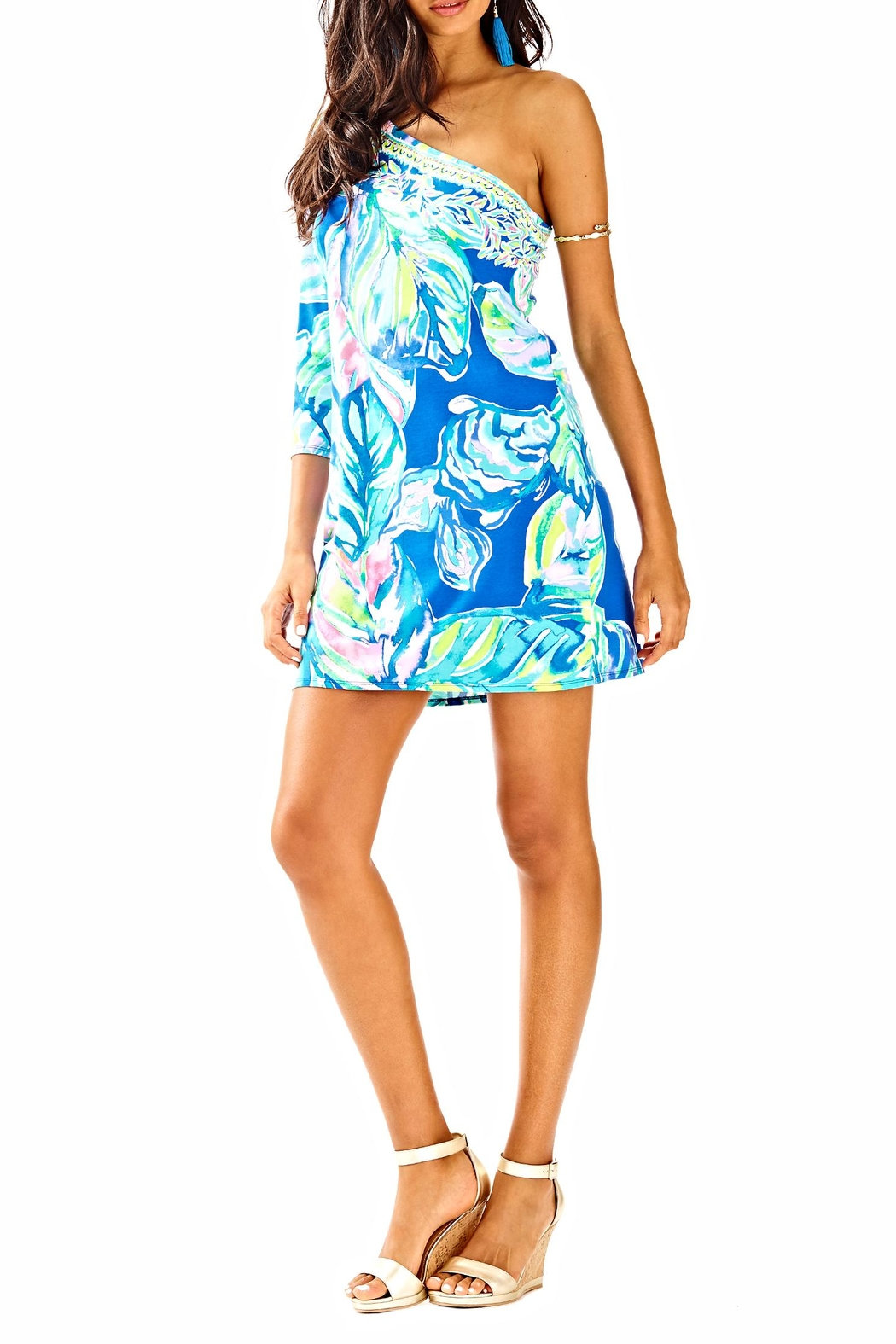 Lilly Pulitzer Petra Dress - Back Cropped Image