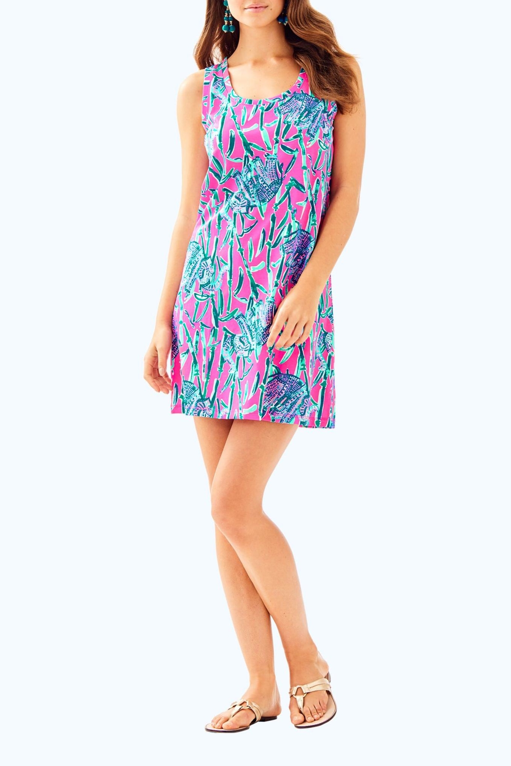 Lilly Pulitzer Raylee Dress - Back Cropped Image