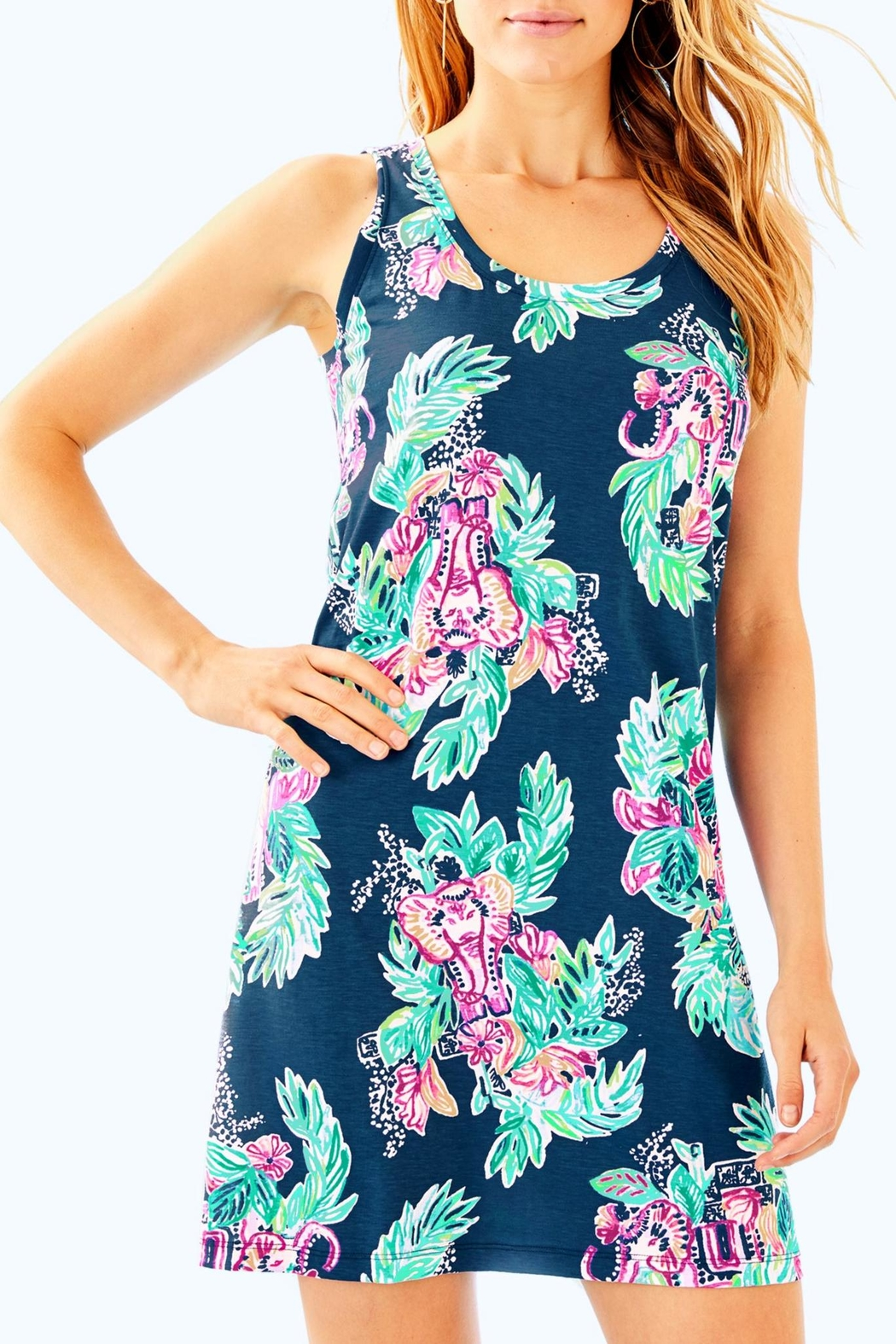 Lilly Pulitzer Raylee Dress - Main Image