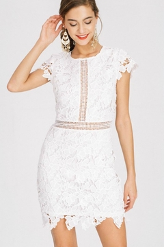 Main Strip Lily Lace Dress - Product List Image