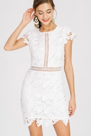 Main Strip Lily Lace Dress - Product Mini Image