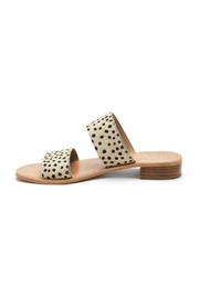 Coconuts by Matisse Limelight Leopard Slide - Product Mini Image