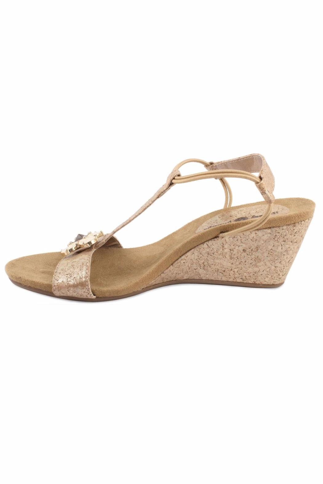 Lindsay Phillips Gold Platform Wedge - Main Image