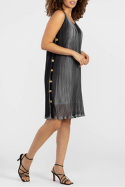 Tribal Lined Pleated Dress - Product Mini Image