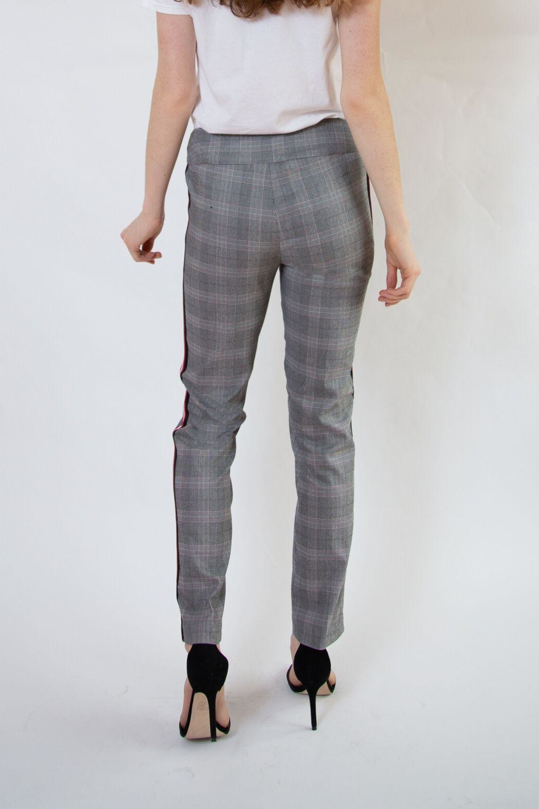 lisette L Plaid Pants With Stripe - Side Cropped Image