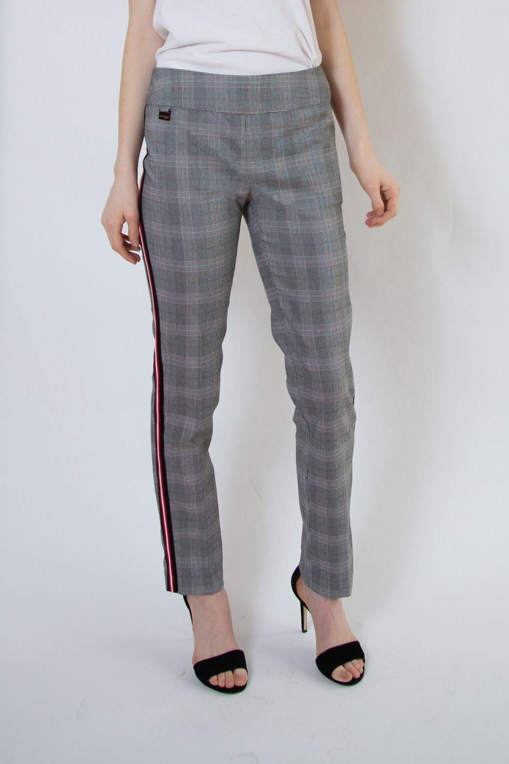lisette L Plaid Pants With Stripe - Front Cropped Image