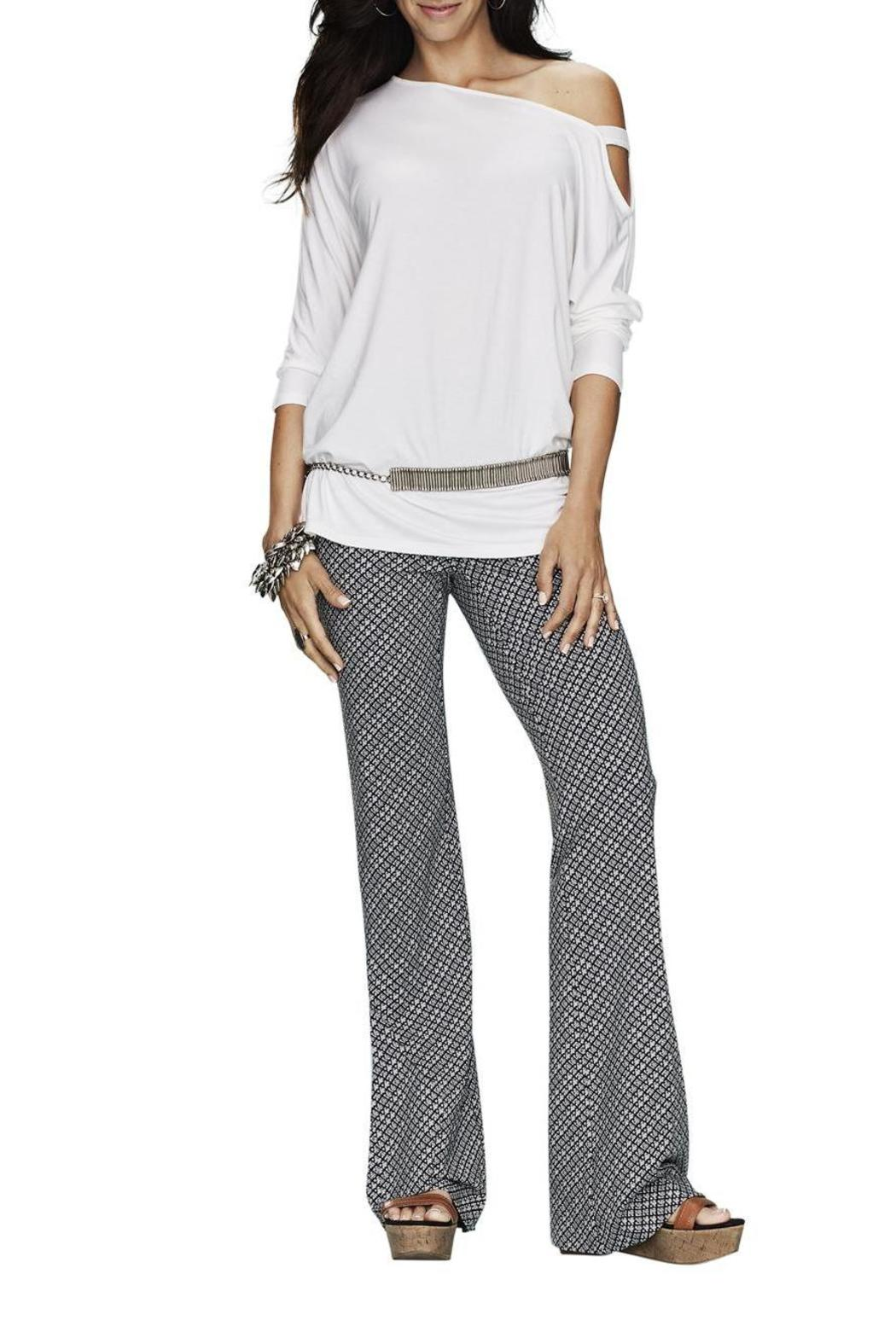 lisette L Printed Palazzo Pant - Front Cropped Image