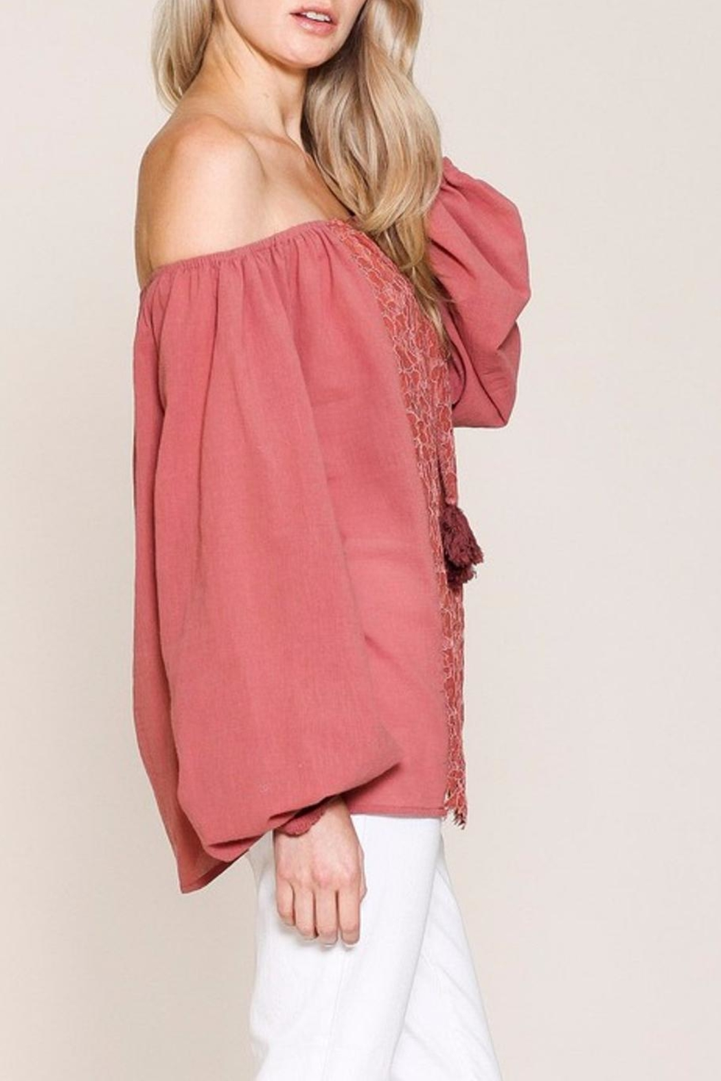 Listicle Top With Embroidery - Back Cropped Image