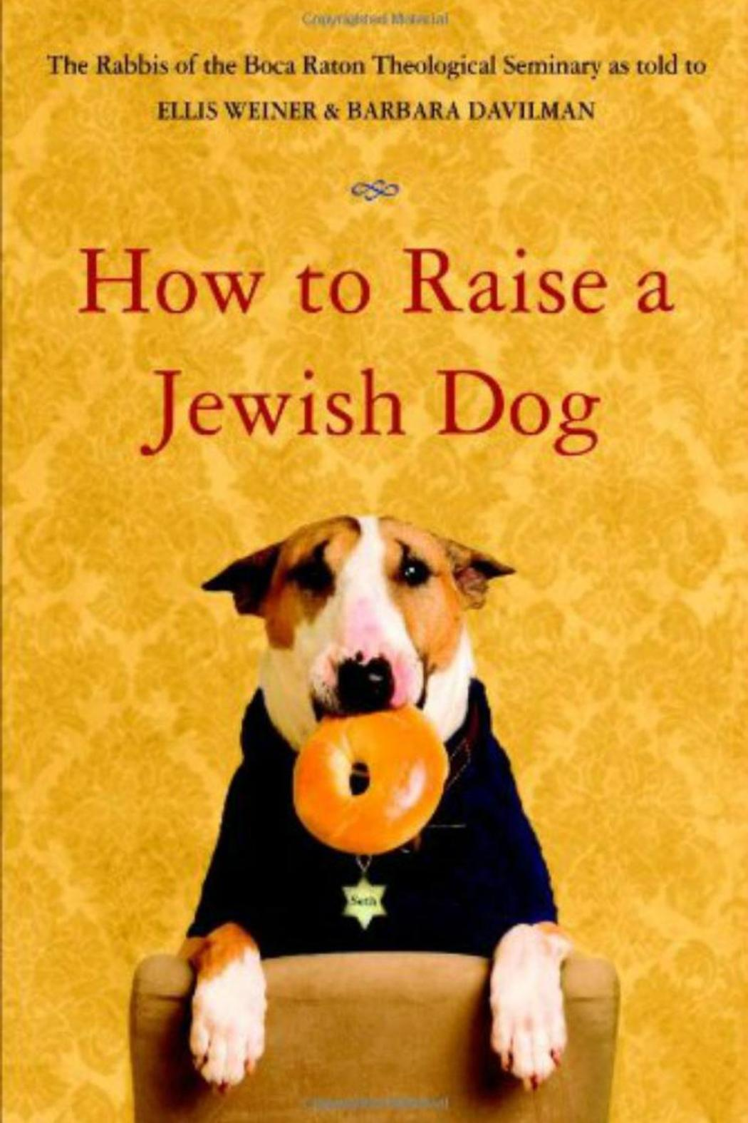 Little Brown  Jewish Dog Book - Front Cropped Image