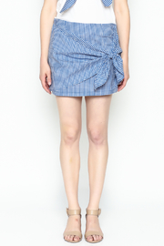 Lively Gingham Skirt - Front full body