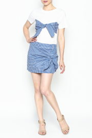 Lively Gingham Skirt - Side cropped