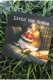 High Cotton Livin Dream Coaster - Product Mini Image