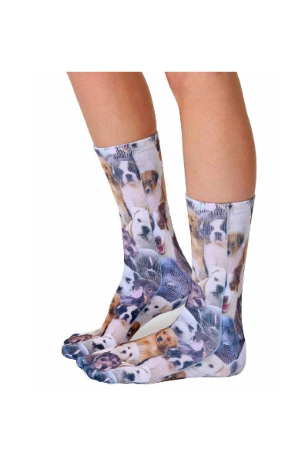 Living Royal Dog Overload Socks - Front Full Image