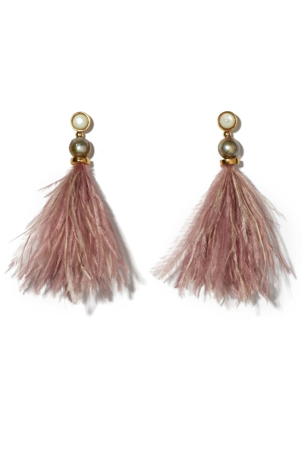 Lizzie Fortunato Parker Earrings - Front Cropped Image