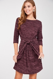 LLove Plum Soft Tie Dress - Side cropped
